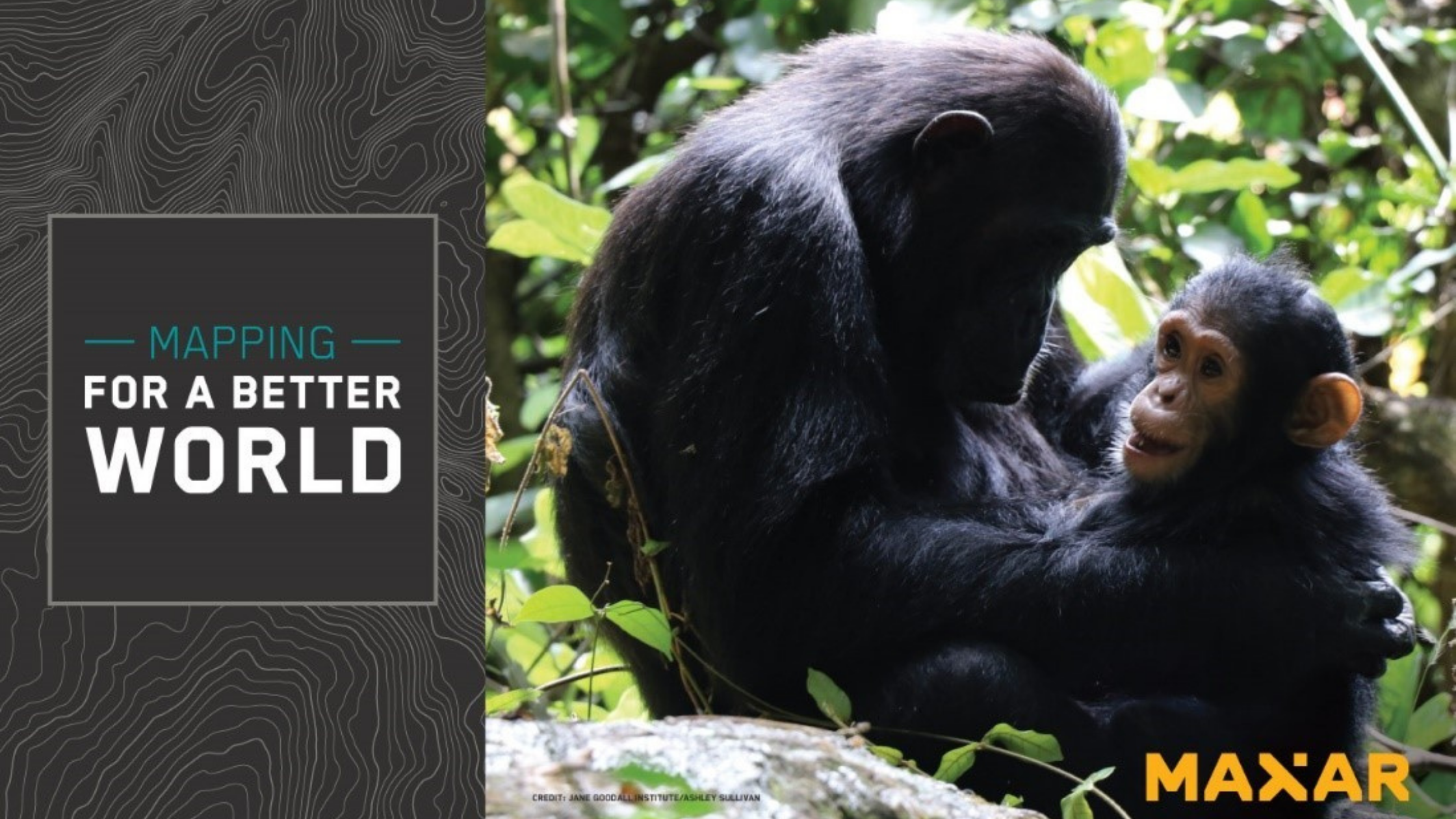 Maxar Employees and Jane Goodall Institute Update Uganda Map for Chimpanzee Habitat and Forest Protection and Restoration